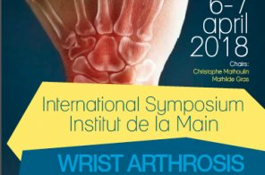 WRIST  ARTHROSIS